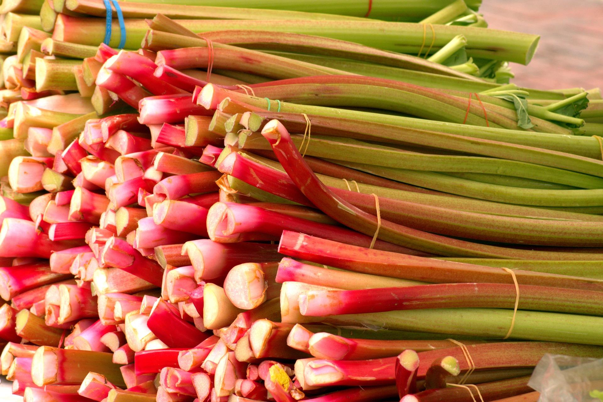 farm-fresh-rhubarb-3508103_1920