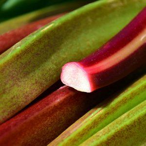 rhubarb-2280153_1920